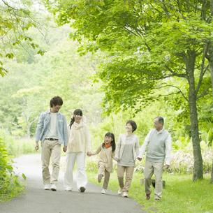 新緑の中で手をつなぐ3世代家族の写真素材 [FYI04545377]