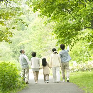 新緑の中で手をつなぐ3世代家族の後姿の写真素材 [FYI04545382]