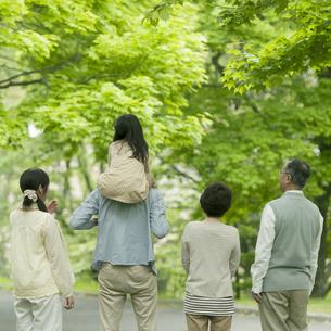 新緑の中に立つ3世代家族の後姿の写真素材 [FYI04545421]