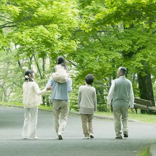 新緑の中を歩く3世代家族の後姿の写真素材 [FYI04545424]