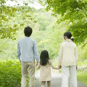 新緑の中で手をつなぐ家族の後姿の写真素材 [FYI04545427]