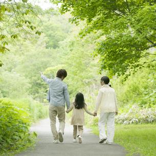 新緑の中で手をつなぐ家族の後姿の写真素材 [FYI04545430]