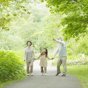 新緑の中で手をつなぐ祖父母と孫の写真素材 [FYI04545438]