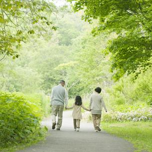 新緑の中で手をつなぐ祖父母と孫の後姿の写真素材 [FYI04545445]