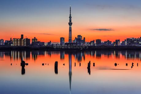Tokyo Twilight Colorsの写真素材 [FYI04545480]
