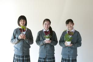 植物を持ち微笑む中学生の写真素材 [FYI04545584]