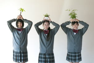 植物を持ち微笑む中学生の写真素材 [FYI04545586]