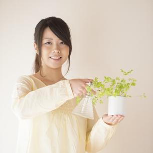 植物に水をやる女性の写真素材 [FYI04545640]