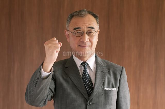 ガッツポーズをするビジネスマンの写真素材 [FYI04546024]