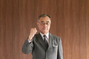 ガッツポーズをするビジネスマンの写真素材 [FYI04546031]