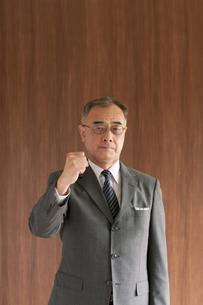 ガッツポーズをするビジネスマンの写真素材 [FYI04546033]