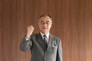 ガッツポーズをするビジネスマンの写真素材 [FYI04546037]
