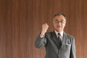 ガッツポーズをするビジネスマンの写真素材 [FYI04546038]