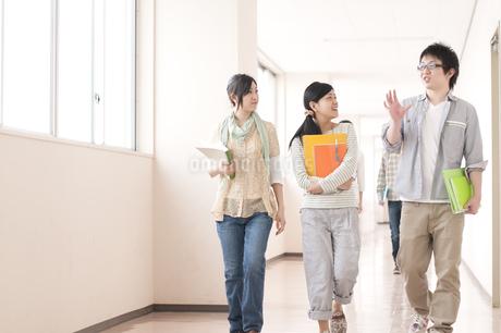 大学の廊下を歩く大学生の写真素材 [FYI04547147]