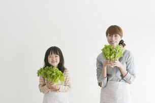 レタスを持ち微笑む親子の写真素材 [FYI04547364]