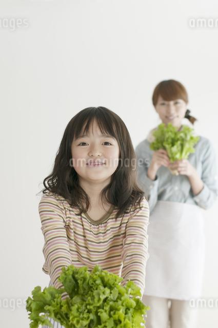 レタスを持ち微笑む親子の写真素材 [FYI04547366]
