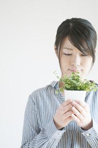 植物を持ち微笑む女性の写真素材 [FYI04547897]