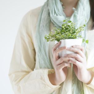 植物を持つ女性の手元の写真素材 [FYI04547945]