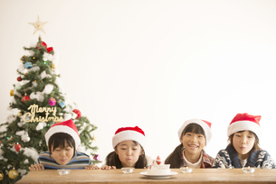 サンタ帽を被った子供達とクリスマスツリーの写真素材 [FYI04548000]