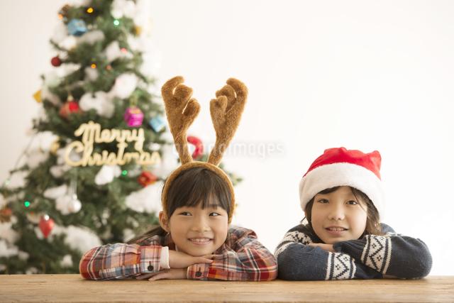 クリスマスの被り物をした子供達とクリスマスツリーの写真素材 [FYI04548014]