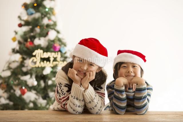 サンタ帽を被った子供達とクリスマスツリーの写真素材 [FYI04548016]