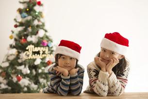 サンタ帽を被った子供達とクリスマスツリーの写真素材 [FYI04548017]