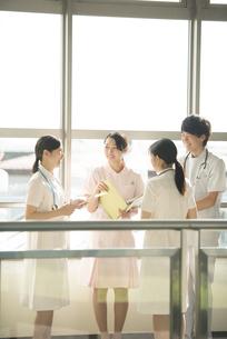 打合せをする看護師の写真素材 [FYI04548244]