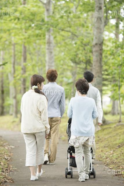 新緑の中で散歩をする3世代家族の後姿の写真素材 [FYI04548276]