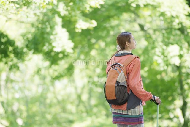 トレッキングをする女性の後姿の写真素材 [FYI04548406]