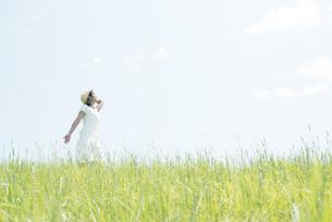 草原で空を見上げる女性の写真素材 [FYI04548498]