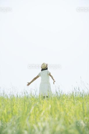 草原に佇む女性の後姿の写真素材 [FYI04548545]