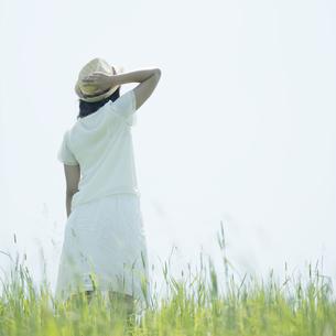 草原に佇む女性の後姿の写真素材 [FYI04548552]