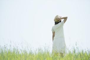草原に佇む女性の後姿の写真素材 [FYI04548553]