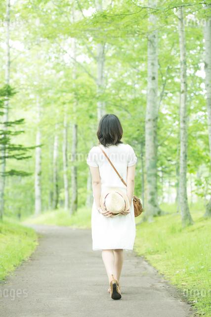 森林の中を歩く女性の後姿の写真素材 [FYI04548581]