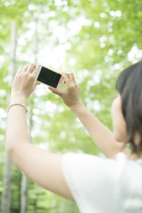 スマートフォンで写真を撮る女性の写真素材 [FYI04548591]