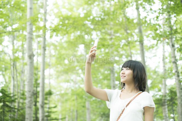 スマートフォンで写真を撮る女性の写真素材 [FYI04548592]