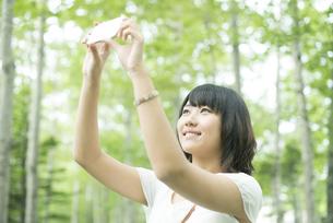 スマートフォンで写真を撮る女性の写真素材 [FYI04548595]