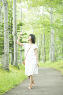 スマートフォンで写真を撮る女性の写真素材 [FYI04548601]