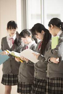 窓際で談笑をする女子学生の写真素材 [FYI04548646]