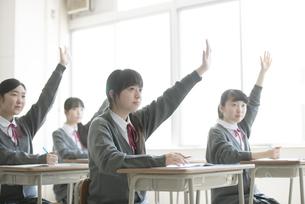 教室で手を挙げる女子学生の写真素材 [FYI04548784]