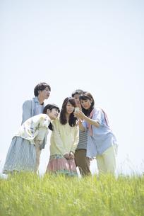 草原でスマートフォンを見る大学生の写真素材 [FYI04548959]