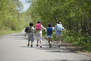 一本道を歩く小学生の後姿の写真素材 [FYI04549049]