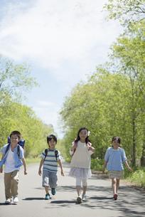 一本道を歩く小学生の写真素材 [FYI04549061]