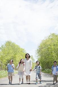 一本道を歩く小学生と先生の写真素材 [FYI04549067]