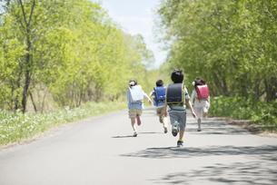 一本道を走る小学生の後姿の写真素材 [FYI04549071]