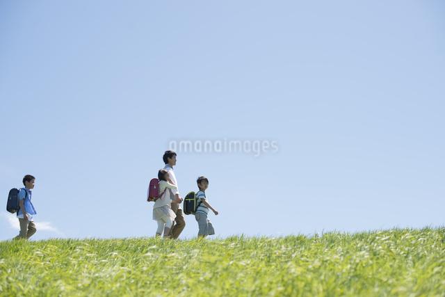 草原を歩く小学生と先生の写真素材 [FYI04549192]