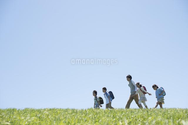 草原を歩く小学生と先生の写真素材 [FYI04549198]