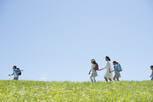 草原を歩く小学生と先生の写真素材 [FYI04549204]
