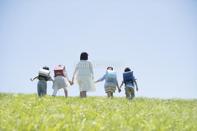 草原で手をつなぐ小学生と先生の後姿の写真素材 [FYI04549227]