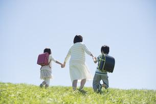 草原で手をつなぐ小学生と先生の後姿の写真素材 [FYI04549241]